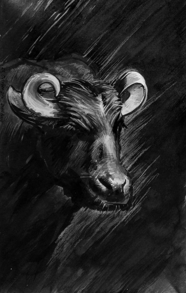 Day 25 - Murrah Buffalo #inktober #inktober2016 http://www.johnphilip.co.za/?p=1441