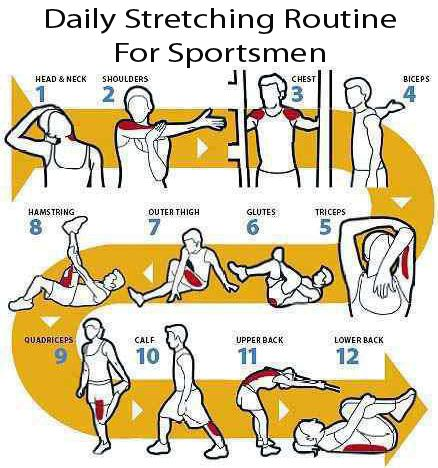 Daily stretching routine for sportsmen #workout