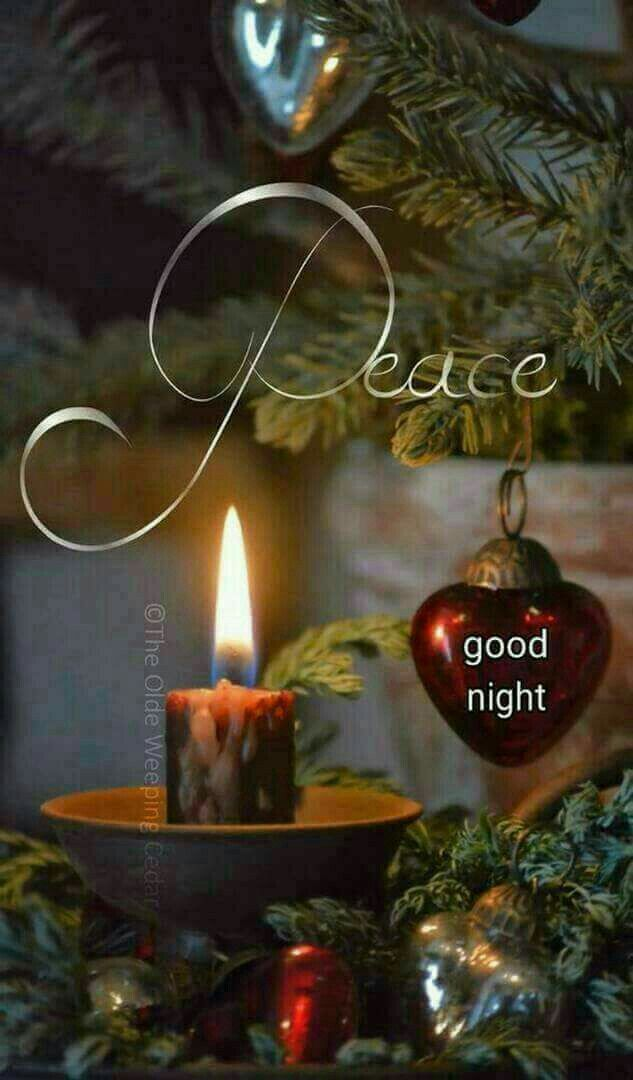 Good night .