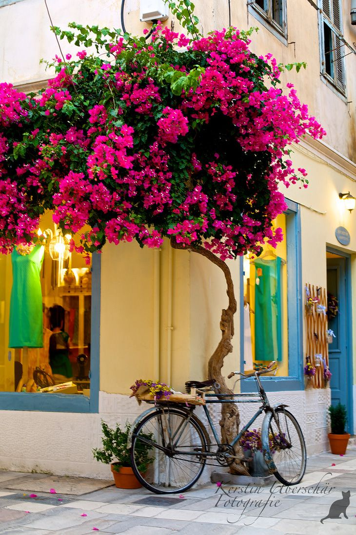 Shops in Nafplio - Greece