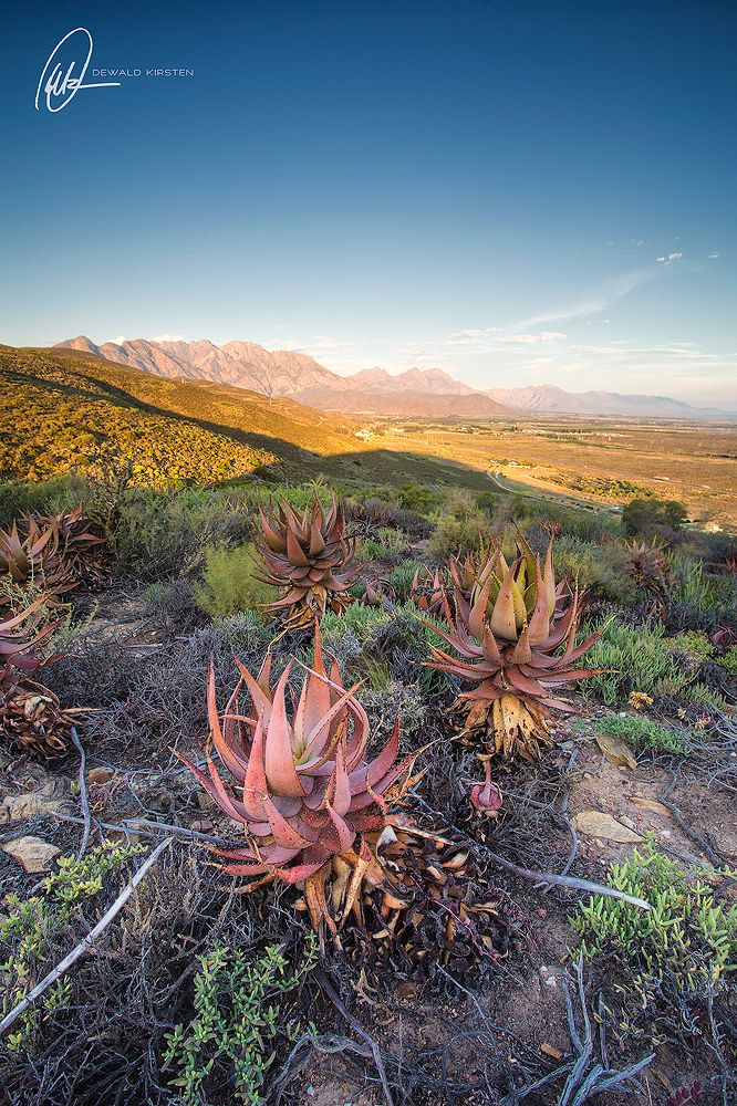 Want to see how to plan your next landscape photography outing, then please follow the link.  #landscapephotography #southafrica #photography #landscape #nature