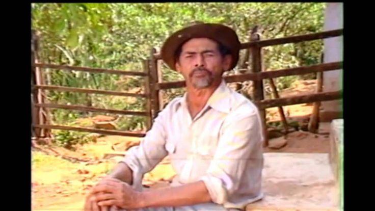 OS CAUSOS CAIPIRAS DE GERALDINHO NOGUEIRA