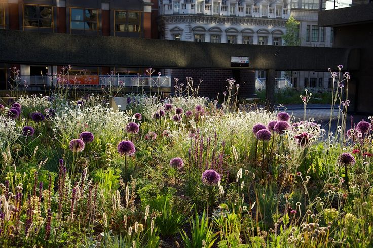 The Barbican, London - an urban garden oasis among brutalist architecture in the heart of Lndon