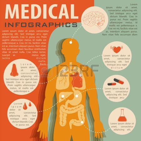 Medische Infographic Met De Menselijke Anatomie Illustratie Royalty Vrije Cliparts, Vectoren, En Stock Illustratie. Image 44806496.