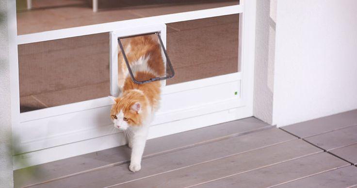 Insekten sollen möglichst draußen bleiben, Hausbewohner wie Hunde oder Katzen dürfen dagegen ins Haus rein. Ideale Abhilfe schaffen hier unsere Haustierklappen für z.B. Schiebeanlagen oder Drehrahmen für Türen. Die Größen der Klappenöffnungen können dabei an die Ausmaße des Tiers angepasst werden. Für Katzen und Hunde sind Fliegengitter jedoch oft eine spannende Alternative zum Kratzen. Krallschutzgewebe von Neher bietet hierbei durch seine hohe Reißfestigkeit die ideale Lösung.