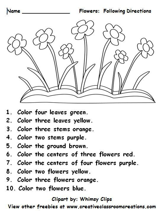 Following Directions Worksheets For Grade 1   Following ...