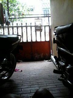 Manasin motor