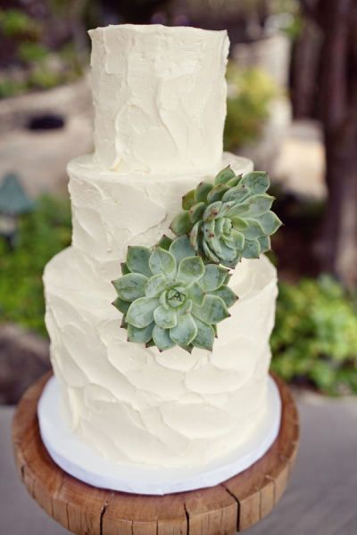 Sculptural succulents look so cool and contemporary on a triple tiered wedding cake
