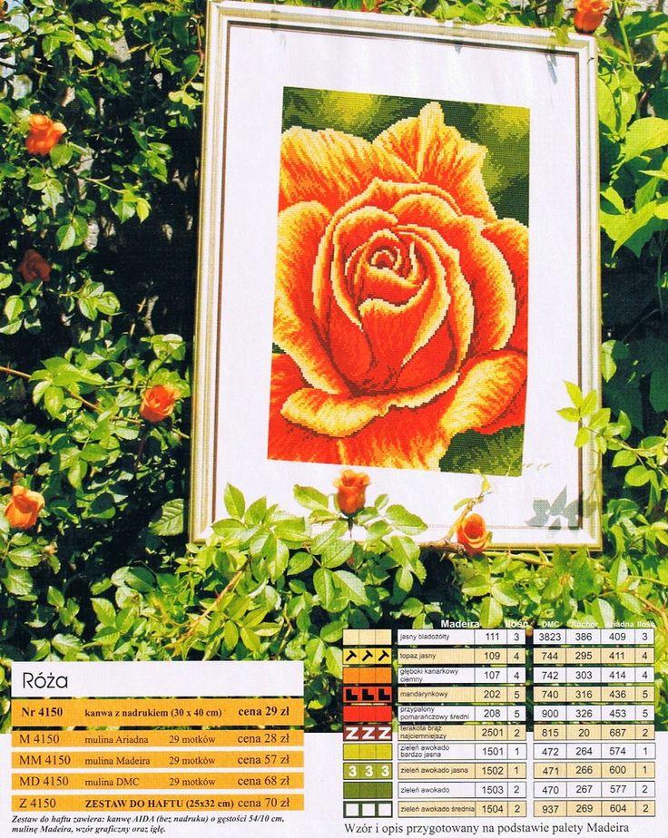 rosa.jpg (1274×1600)