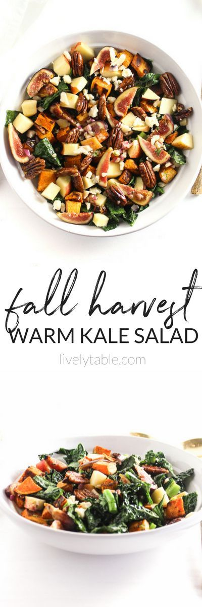 This Fall Harvest Warm Kale Salad is filled with all of the flavors of fall - sweet potatoes, figs, honeycrisp apples, and candeid pecans- in a warm, delicious salad that you'll enjoy all season long! (#glutenfree, #vegetarian, #vegan option)  #kalesalad #fall  via livelytable.com