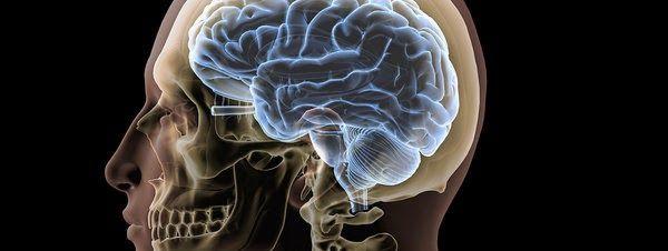 AIRLIFE te dice. Al presentarse mercurio en el cerebro se degradan las habilidades para el aprendizaje,  presentan cambios de personalidad, temblores ,perdida de la visión, perdida de la audición, falta de coordinación muscular, perdida de la memoria, y produce mongolismo.