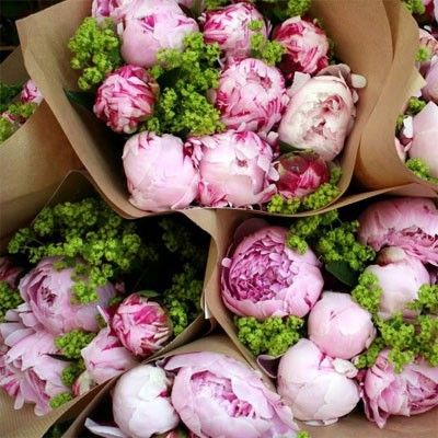 Beautiful Flower, Rose, Brown Paper, Colors, Green, Bouquets, Gardens, Fresh Flower, Pink Peonies