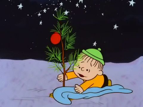 It's not a bad little tree, it just needs love. Just like we all do!