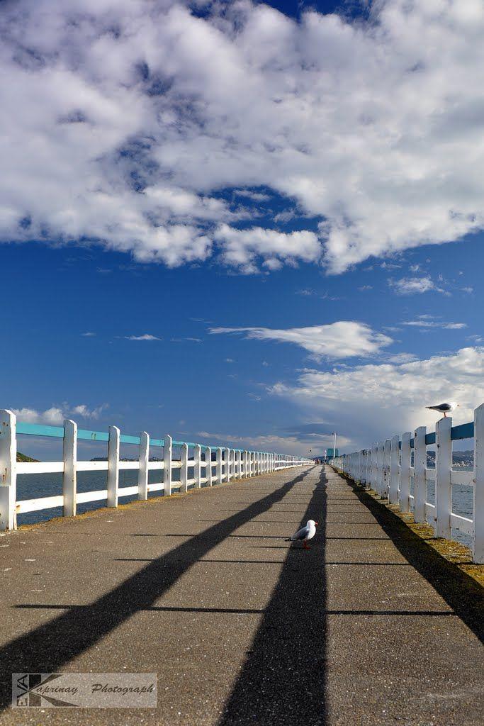 Photo taken in The Esplanade, Petone, Lower Hutt, NZ