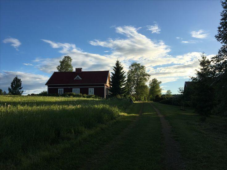 A summer evening.