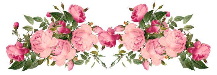 ผลการค้นหารูปภาพสำหรับ ดอกไม้สวยๆ