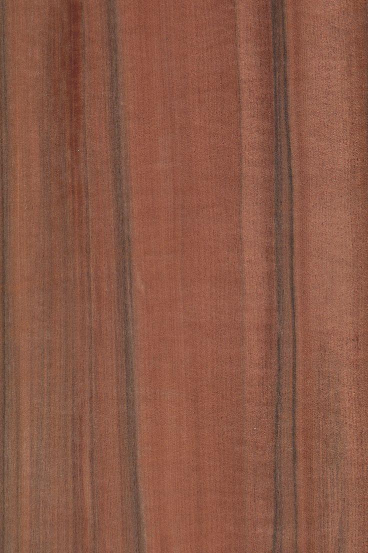 Tineo - indischer Apfel | Furnier: Holzart, Tineo, Blatt, dunkel, rot, rötlich, braun,Exoten,  #Holzarten #Furniere #Holz