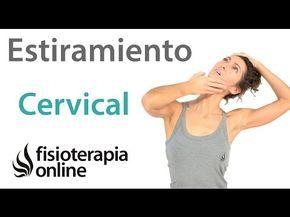 Estiramiento global de cadenas musculares cruzadas para la espalda - YouTube