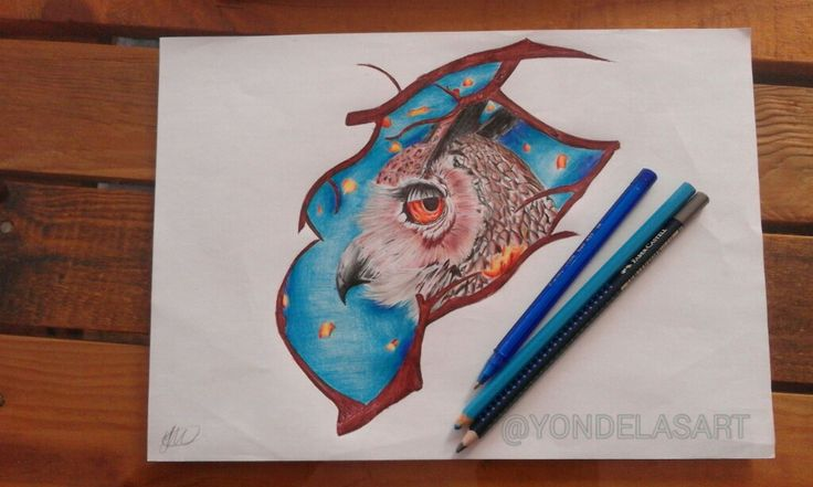 Mixed media drawing of owl, mostly used colour pens😊