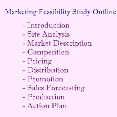 A simple business feasibility study feasibility study on online business flashek Gallery