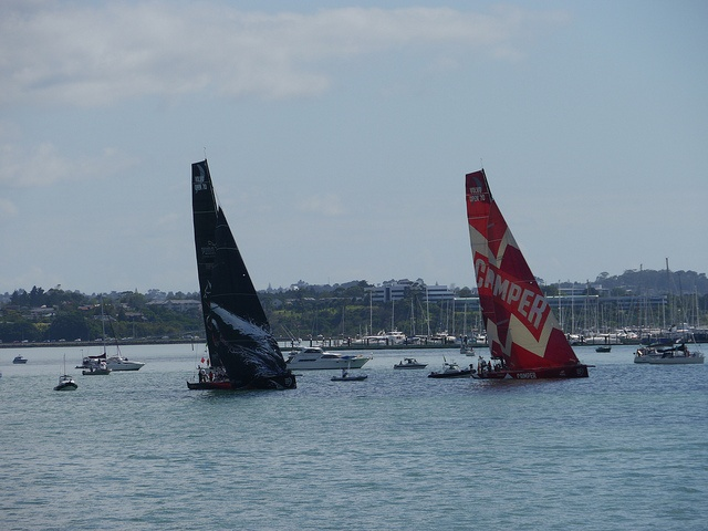 Camper and Puma, from the Volvo Ocean race in Auckland