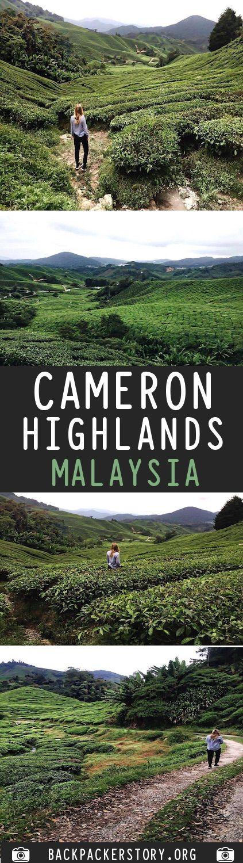 Cameron Higlands, Malaysia: GUIDE