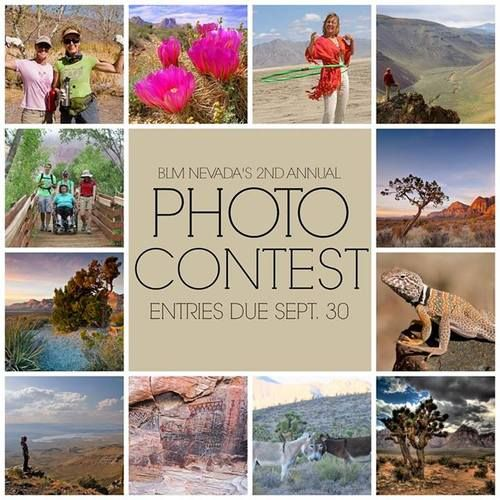 25 best outdoor photography images on pinterest outdoor blm nevada is seeking amazing photos from amateur photographers that highlight the best of blm nevadas sciox Gallery