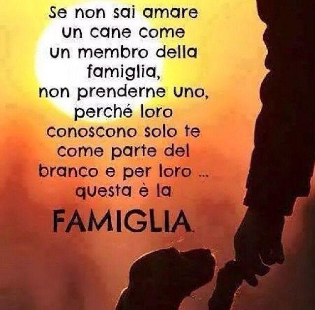 #cane #famiglia #amore