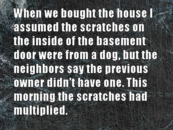 When we bought the house, I assumed the scratches on th inside of the basement door were from a dog, but the neighbors say the previous owners didn't have one. This morning, the scratches had multiplied.