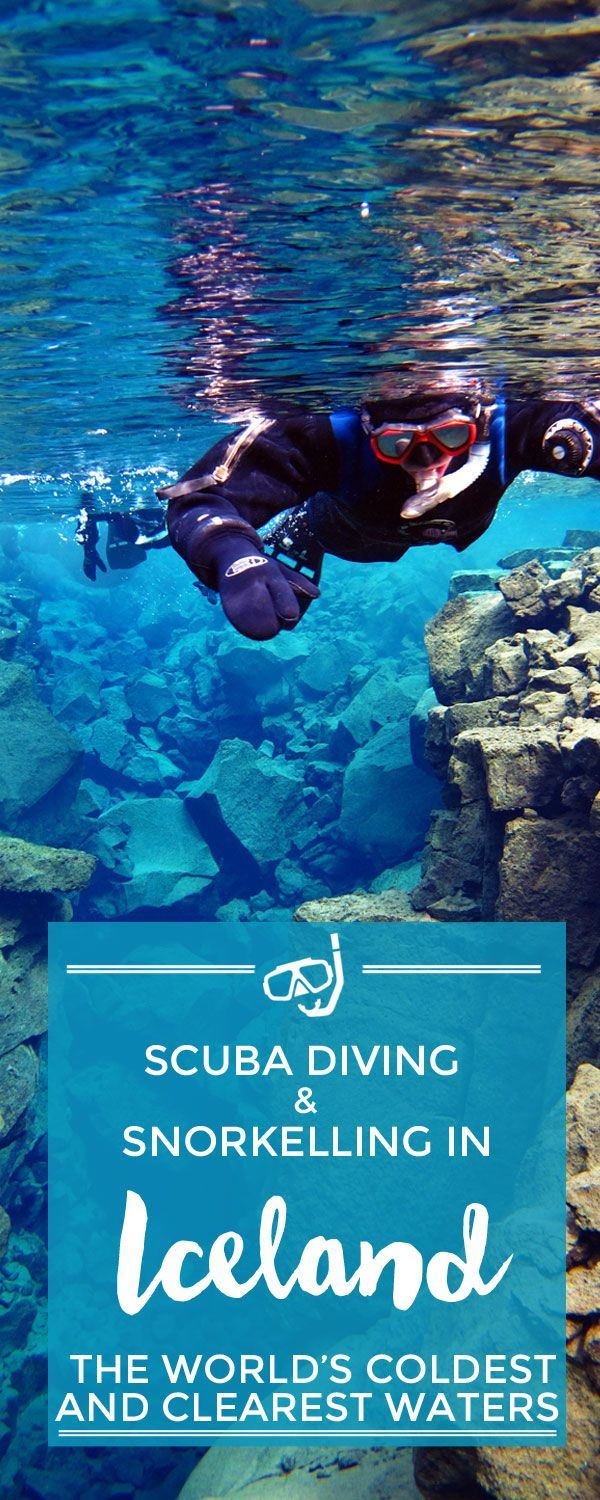 Facing the notoriously cold Icelandic waters: scuba diving