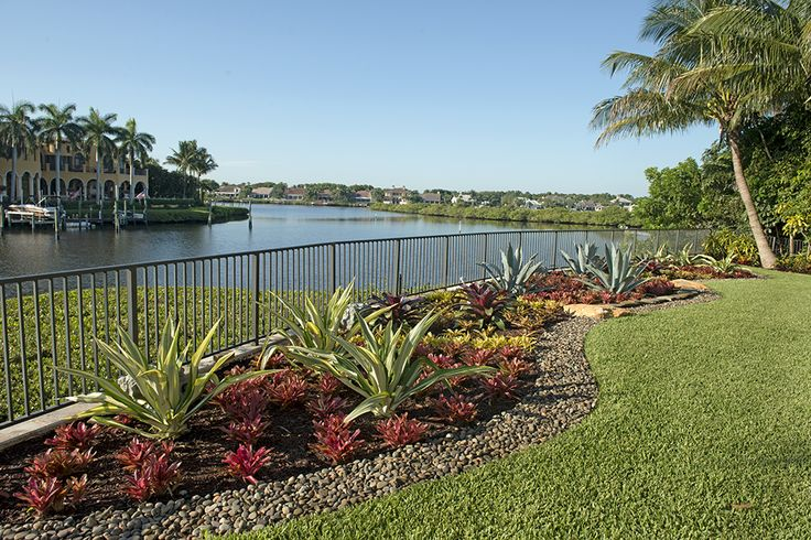 17 Best Images About South Florida Landscaping On 640 x 480