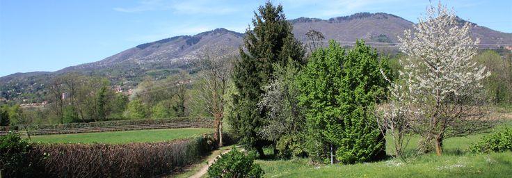 Panoramica sul Massiccio del Campo dei Fiori da Morosolo, un angolo verde bello e tranquillo. Foto di ITCvarese
