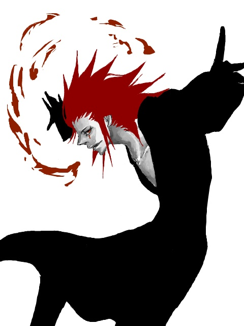 423 best images about Akuroku on Pinterest