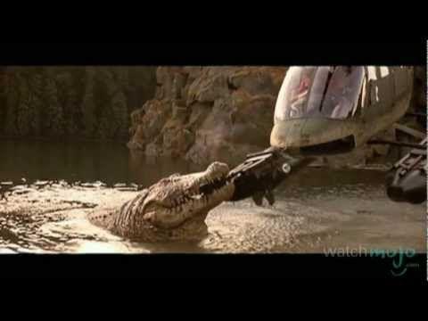 Top 10: Horror Movie Animals: AKA the top 10 worst horror movies...