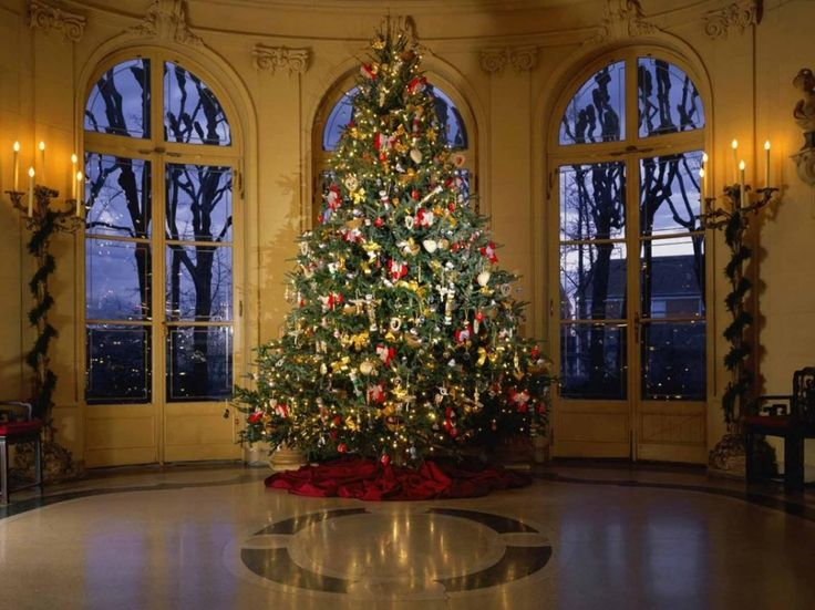 most beautifull christmas tree decorations - Beautiful Christmas Tree