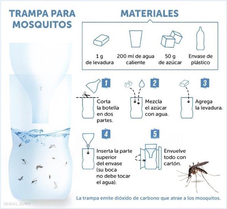 M s de 1000 ideas sobre trampas para mosquito en pinterest - Trampa casera para moscas ...