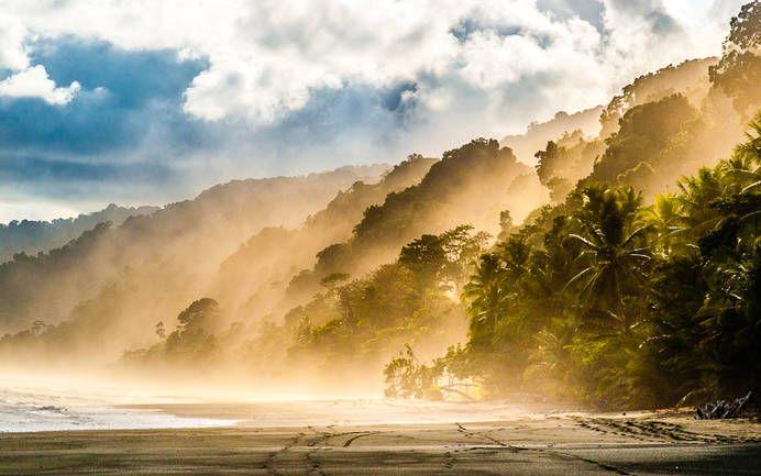 Malerisches Corcovado: Küstennebel im Nationalpark