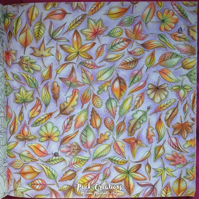 Secret Garden Coloring Book By Johanna Basford Johannabasfordsecretgarden