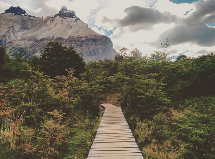 none of my regular morning views can even a bit compare to these early autumn mornings in patagonia   #patagonia #chile #igerschile #torresdelpaine #painegrande #hiking #wandering #beautifuldestination #lovetheworld #earthcapture #natureknowsbest #alpakamybags #drogadługajest #naszlaku #awww