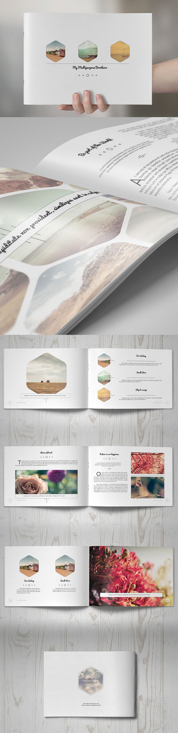 best 25  brochure templates free download ideas on pinterest