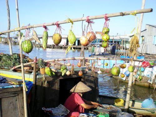 CẦN THƠ - CÀ MAU - SÓC TRĂNG - BẠC LIÊU (Thứ 7 hàng tuần) - Vietnam Day Tour, Vietnam Tours, Travel Vietnam, Mekong Delta, Muslim Tour