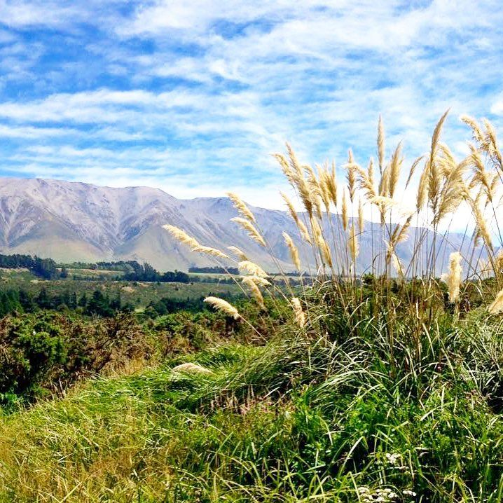 Check out this amazing view from the Rakaia Gorge Walkway!