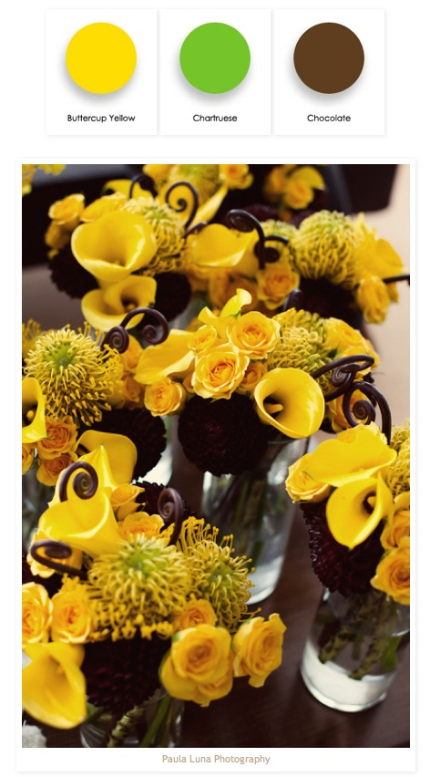 buttercup yellow, chartruese & chocolate