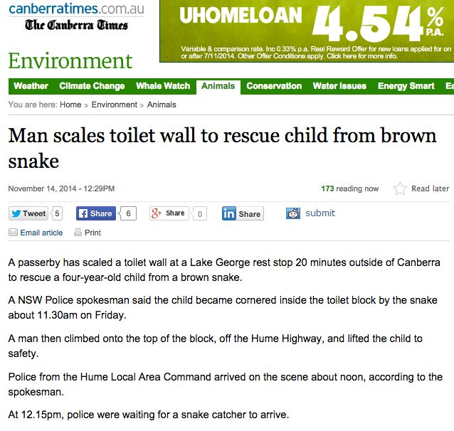 Brown snake terrorising tourists (article from Canberra Times)