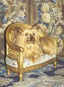 marinni: Старинная мебель для собак и собачек. Часть 1.