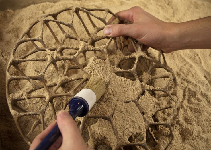 3d sculptures made out of a sawdust printing machine