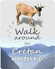 Explore Cretan Nature