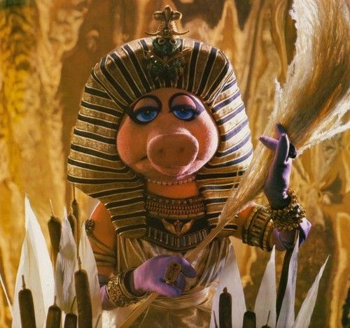 21 Best Muppet Love Images On Pinterest: 452 Best Miss PIGGY Images On Pinterest