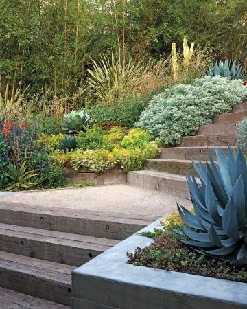 Railroad Ties: The informality of these materials – railroad-tie steps and DG landings – is warm and inviting, especially when surrounded by sculptural agaves and mounding artemisia.