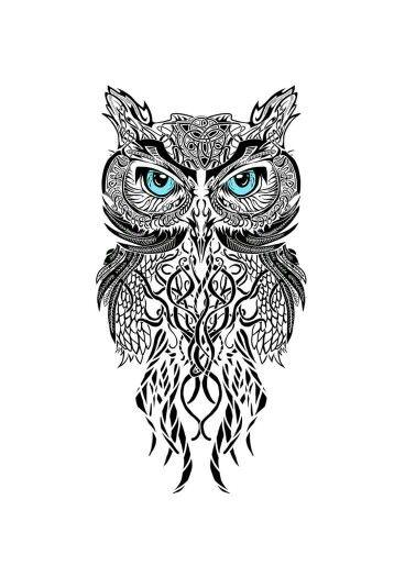 Knot Owl